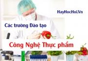 Các trường đào tạo ngành Công nghệ thực phẩm ở Tp.Hồ Chí Minh, Hà Nội và các Tỉnh
